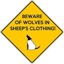 wolf in sheep clothing